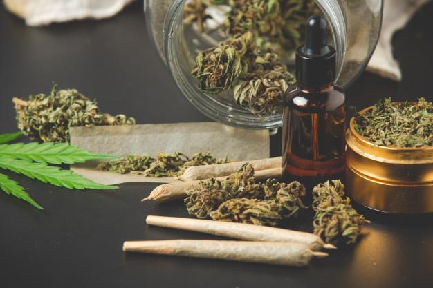 Hodowanie marihuany na własne potrzeby – warunkowe umorzenie i uniewinnienie